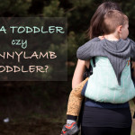 Tula Toddler czy LennyLamb Toddler?